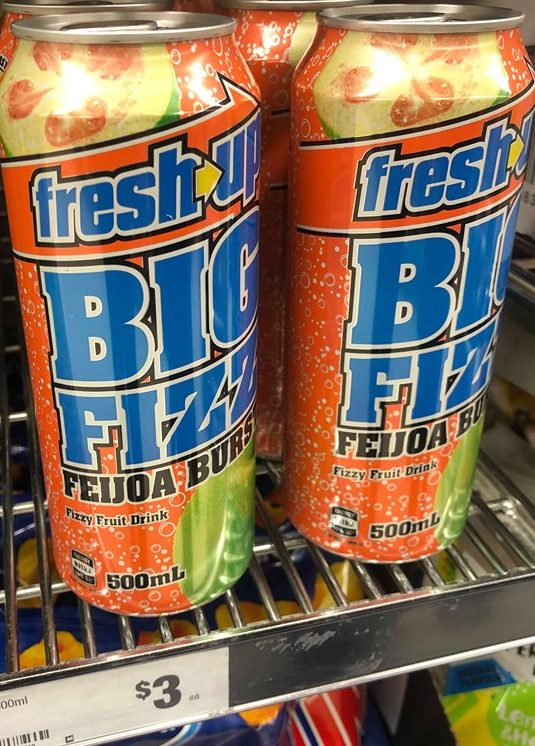 big fizz feijoa burst 500ml