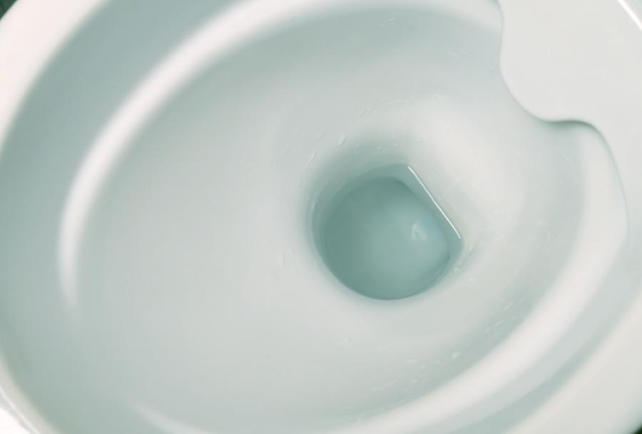 rimless toilet bowl example